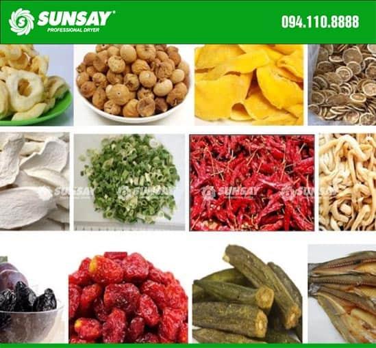 Máy sấy lạnh SUNSAY chuyên sấy nông sản thực phẩm